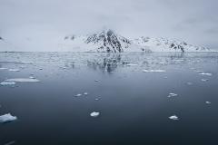 Amsterdamoya, Svalbard